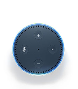 Ask Amazon Echo Dot