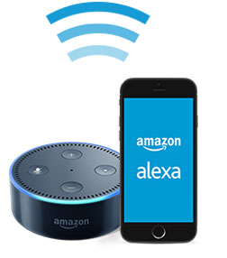 Connect Amazon Echo Dot